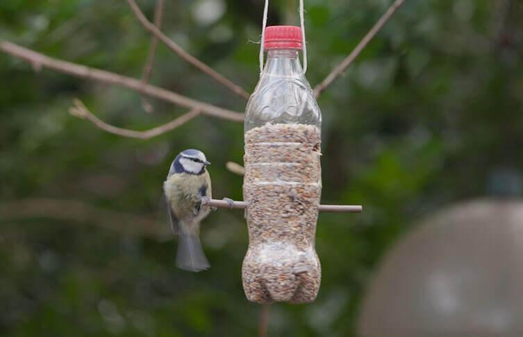 Mangeoire à oiseaux écologique fabriquée avec une bouteille plastique
